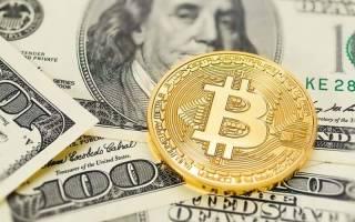 Сколько биткоинов можно заработать за день