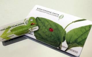 Как пополнить «Подорожник» с банковской карты и другими способами